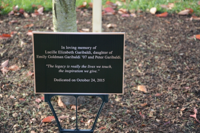 Plaque dedicated to two year old Lucy